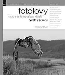 Fotolovy - naučte se fotografovat dobře zvířata v přírodě